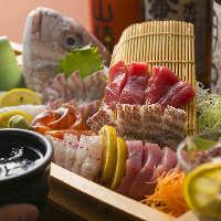 静岡県伊豆から直送!脂が乗り肉厚な金目鯛!圧倒的な美味しさ!