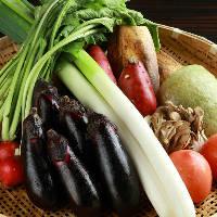 《野菜》 天ぷらやおばんざいでたっぷり楽しめます