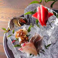 箕島漁港から水揚げされた鮮魚の数々!
