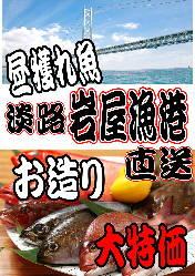 淡路岩屋漁港直送!