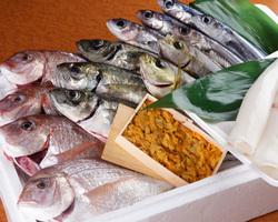独自ルートで日本海直送の天然魚介 旬を堪能してください。