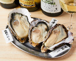 豊洲直送の厳選牡蠣を味わえる!珍しい産地の牡蠣もご用意有◎