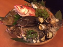 魚の種類も容赦なし!!もちろん日替わり!!
