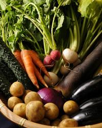 三浦野菜など【地産地消】の 緑提灯の素材を使用