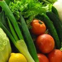 那須の大自然で採れた新鮮なお野菜も使用!