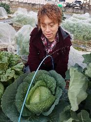 【有機野菜】 無農薬有機野菜を栽培♪体に良い美味しい野菜を!
