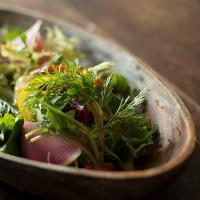何といっても練馬の新鮮な露地野菜!年間60種類以上