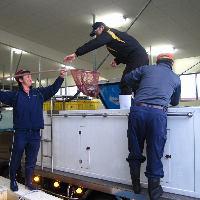 九州各地の漁港から自社の活魚車で新鮮なお魚たちを調達♪