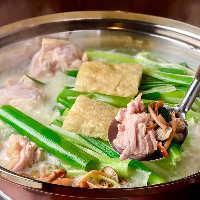 有田鶏濃厚スープの水炊き5500円(税込)コースが一番人気!