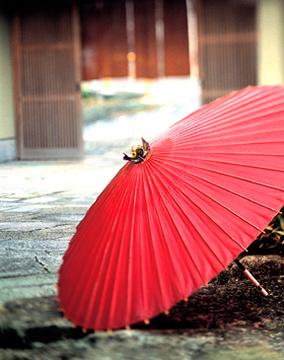 桜坂 観山荘