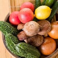 安心・安全の沖縄県産野菜を使用しております。