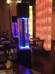 店内水槽設置!ブルーに照らされた綺麗な魚と共にお食事!