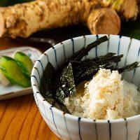 超新鮮なお魚料理盛りだくさん!