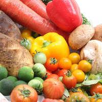 新鮮野菜を使った創作メニューを心おきなくどうぞ。