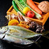 【新鮮食材】 九州産の魚介や野菜など同じ風土のものを厳選!