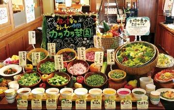 沖縄菜園ビュッフェカラカラ パレットくもじ店