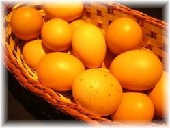 糸満の上原養鶏場で直接仕入れた新鮮な「はっこう卵」