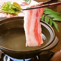 沖縄県48酒造所の泡盛をご用意 しています。