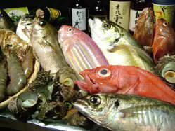 博多ならではの新鮮なお刺身を日替わりでご用意しております。