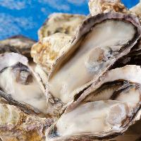 ぷりっぷりな播磨灘産の牡蠣。食べ放題や牡蠣小屋コースも人気!!