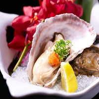 新鮮な北海道産生牡蠣