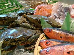 日替わりで新鮮な魚介を展示しております