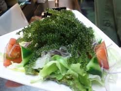 海ぶどうたっぷり海ぶどうサラダは、暑い時期にぴったりです!