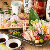 究極の血抜き「神経〆」で保存されている魚を是非、召し上がれ!