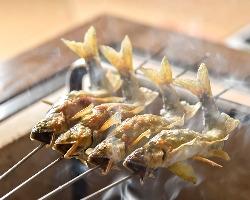 鮎を焼いた時に尾が反るのは、新鮮さの証拠だ。