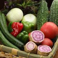 お肉だけでなくお野菜も沖縄県産にこだわっております