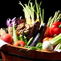 安心・安全なお野菜を使用。