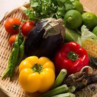 【旬野菜】 地元久留米の食材を使用しているのでとっても新鮮