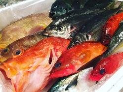 九州・沖縄の鮮魚でコースも作りますよ。リクエスト承ります。