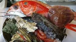 各種の新鮮鮮魚を当日仕入れでご提供しています。