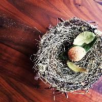 """那珂川町の食材×自然が織りなす""""美味しいアート""""に出逢えます"""