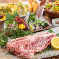 【天神×肉】 自慢の肉料理も充実!肉食らう。メニュー満載◎