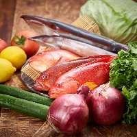 信頼のおける魚屋さんから仕入れる鮮魚を様々な調理法でご提供