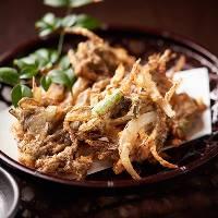 【沖縄料理】 沖縄食材を使用したお料理に泡盛を合わせてどうぞ