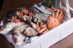 【新鮮な海の恵み】 五島列島の恵み!毎朝直送の鮮魚を使用