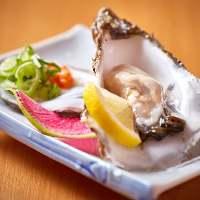 【本日の生牡蠣】 シンプルにポン酢でお召し上がりください!