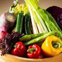【厳選野菜】 瑞々しさ溢れる旬の野菜を随時仕入れています