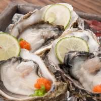 NZ産の安心安全な生牡蠣です