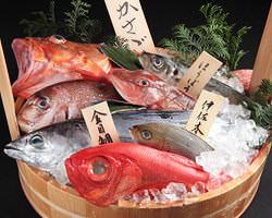 四季折々の新鮮な魚介類を 楽しんで頂けます。