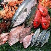 築地直送の全国からの新鮮魚介をお刺身でどうぞ♪