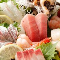 豊洲市場に出向いて直接買い付けた、新鮮魚介の数々をご堪能
