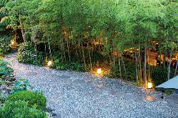 自然豊かな庭園を眺めながらお食事をお楽しみいただけます。