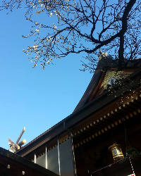 湯島天神までは徒歩2分 路地裏には今も残る風情ある江戸の面影