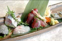 日替わり鮮魚 鯛 カツオ 鯵