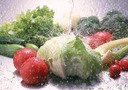 大地の恵みを受け育った野菜。彩り豊かな野菜の味わいを。