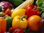 有機栽培の野菜にこだわり 身体にやさしい食材使用